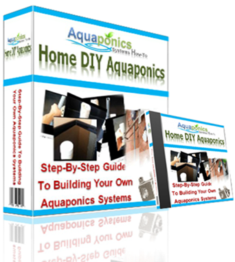 DIY Aquaponics Systems