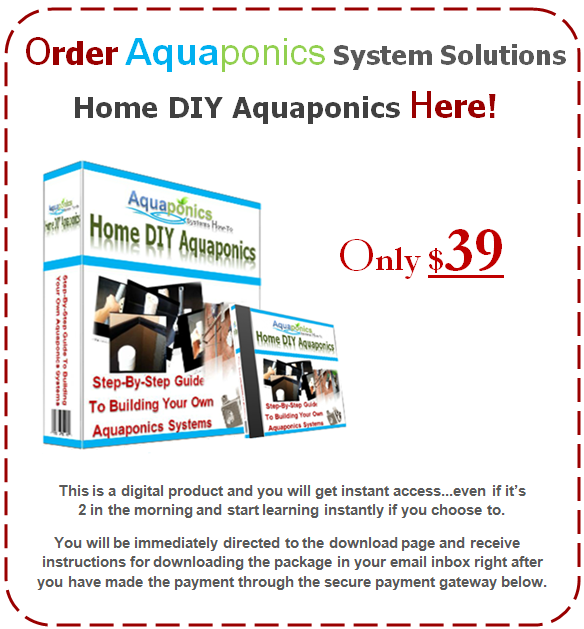 DIY Aquaponics Guide
