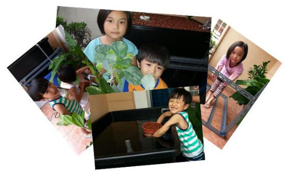 About our Aquaponics family