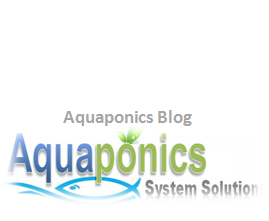 Aquaponics System Solutions Blog