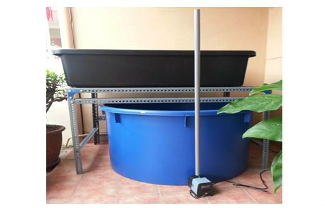 Aquaponics Tank and PVC
