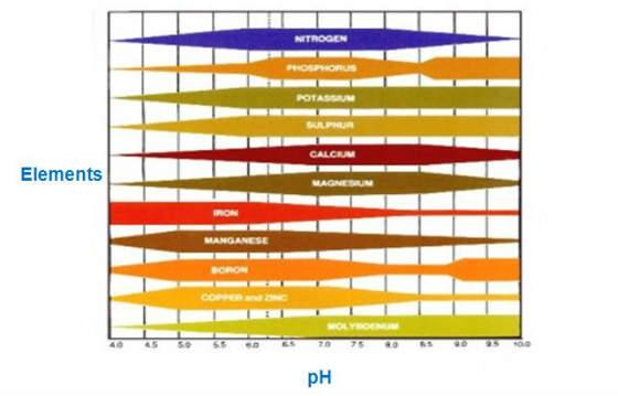 Aquaponics Water Chemistry