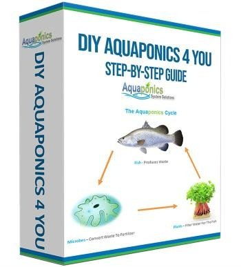 step by step guide to diy aquaponics
