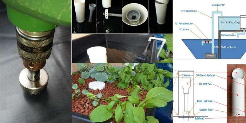 diy aquaponics made easy