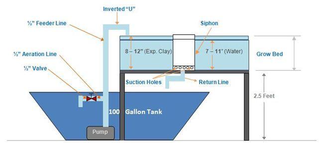 DIY Aquaponics Setup You Can Actually Build - with Photos, Plans & PDF