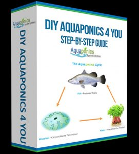 DIY Aquaponics 4 You - Made Easy