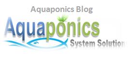 aquaponics blog